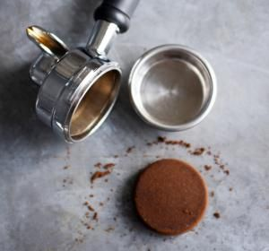 10 remedios contra plagas, hongos y plantas desnutridas: Fertiliza y espanta las hormigas