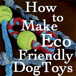 Happy National Dog Day!  How to Make Eco-Friendly Dog Toys from Old Jeans & Tees #nationaldogday #ecopetsrock