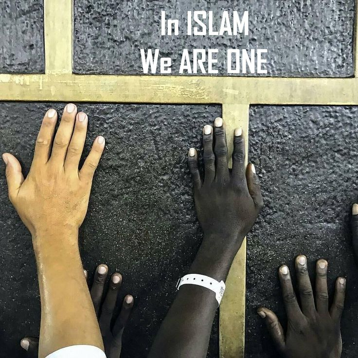 """"""" All mankind is from Adam and Eve, an Arab has no superiority over a non-Arab nor a non-Arab has any superiority over an Arab; also a white has no superiority over a black nor a black has any superiority over a white - except by piety and good action. """" Musnad Ahmad bin Hambal, Hadith No. 22978, Vol.6,"""