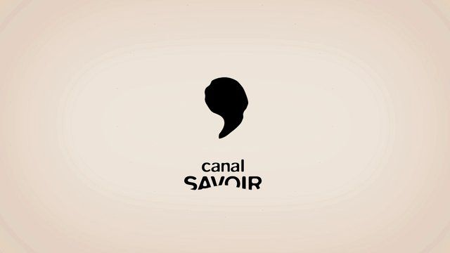 [ CANAL SAVOIR ] - 2012 by GABRIEL POIRIER-GALARNEAU / GPG. Client : CANAL SAVOIR [http://canalsavoir.tv]