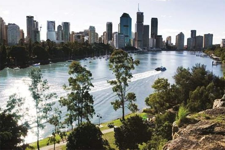 Charming Picnic Spots in Brisbane   True Local Blog