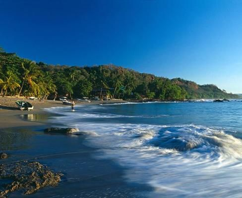 Costa Rica... Just a couple more days! :): Resorts Costa, Favorite Places, Seasons Resorts, Rica Seasons, Places I D, Foto Costa, Beautiful Birds, Seasons Costa, Costa Rica 3