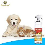 Review for SunGrow Advanced Pet Urine Stain and Odor Remover for Dogs & Cats Owners: Clear,... - Ami Vanderhoff  - Blog Booster