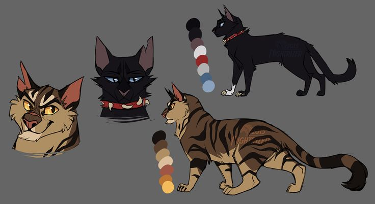 Warrior Cats Discord
