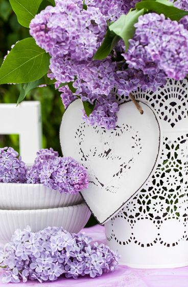 Pantone Color 2015 February...sheer lilac tones...blooms