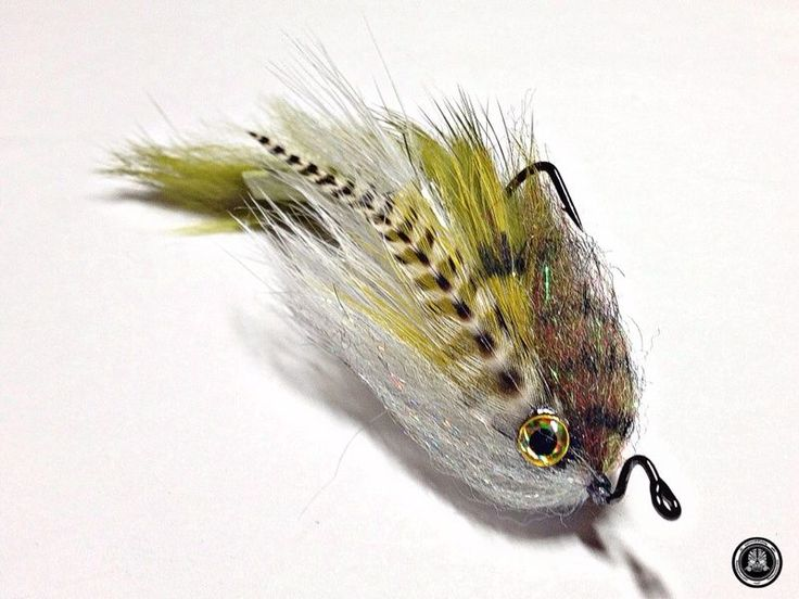 613 best images about bass flies on pinterest fly shop for Bass pro shop fly fishing