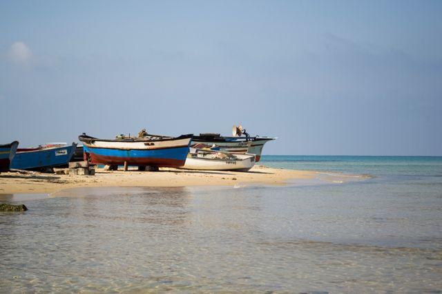 Tunesië is een bijzonder land met vele mooie bezienswaardigheden. Een land waar ook het toerisme steeds meer in opkomst is.