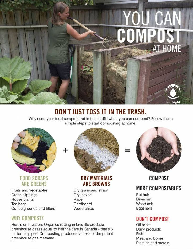 You Can Compost At Home (PDF)