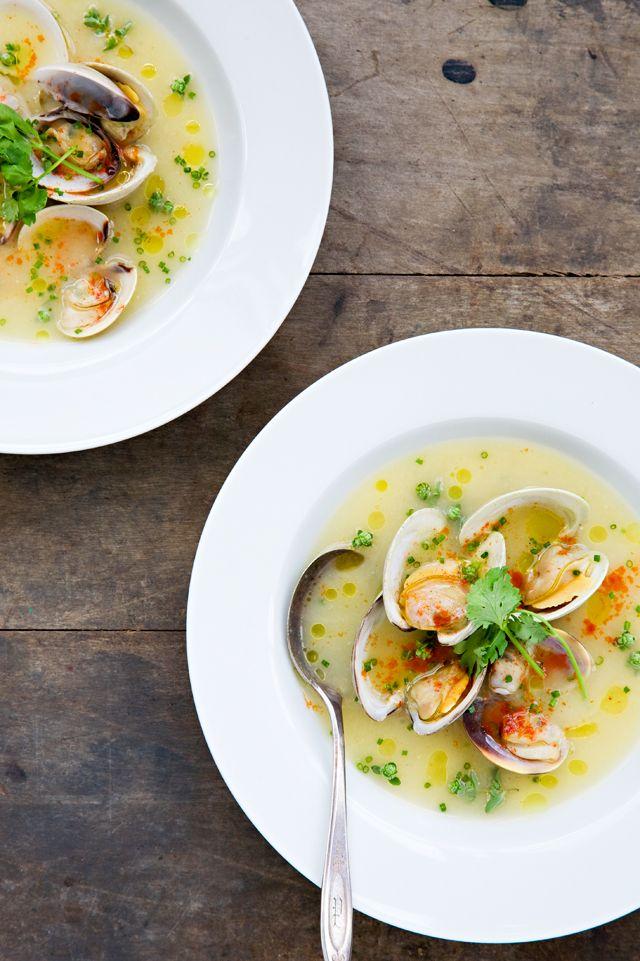 clams in pernod + shallot broth