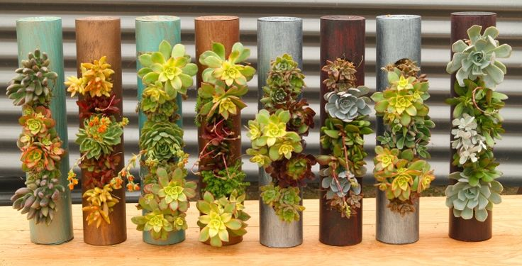 Decor Fiori Planting Metal Cylinders - simple yet so much fun!