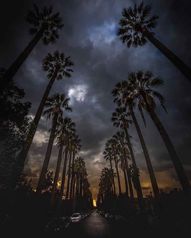 Location: Pomona, California
