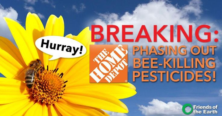 3b2fe0fe6c1 Home Depot has agreed to eliminate bee-killing neonicotinoid pesticides in  its