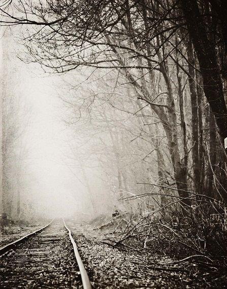 Railroad Tracks Fog Landscape Photography by ShadetreePhotography