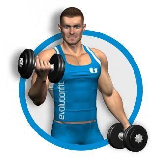 Il rematore è uno degli esercizi più completi per l'allenamento del dorsale. Stimola maggiormente lo