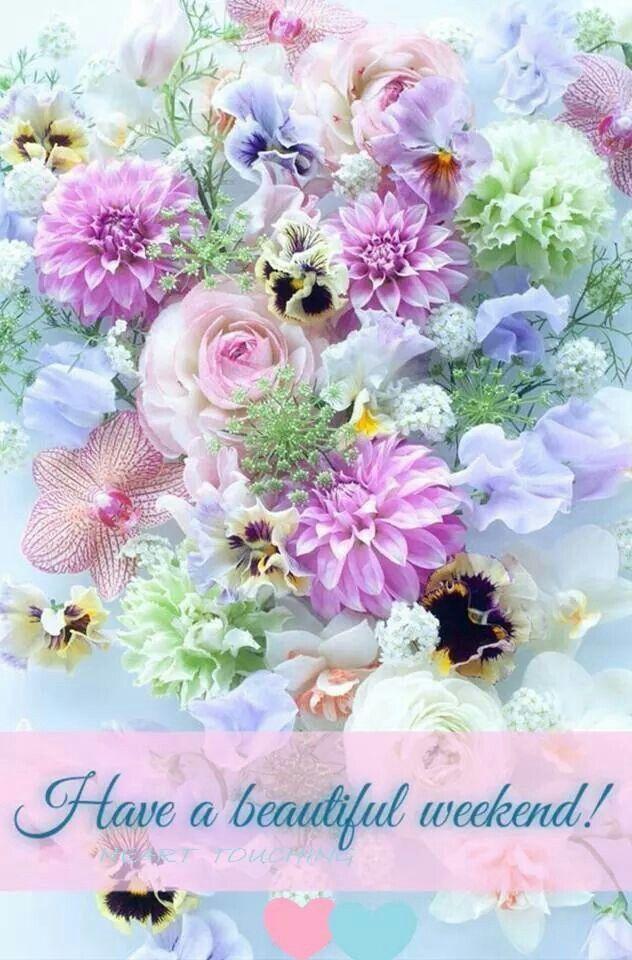 https://i.pinimg.com/736x/1d/16/eb/1d16eb693a2192b7df9a41fb02105b7e--pastel-floral-pastel-flowers.jpg
