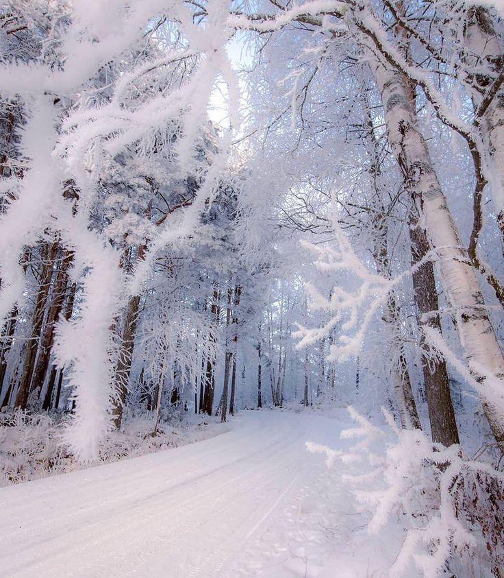 сейчас вами красивые фото снегопада урография