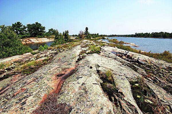 Island In Secret Bay - French River Georgian Bay Ontario Canada #art #photography #secretbay #frenchriver #georgianbay #rock #island #naturelovers #plants #artforsale