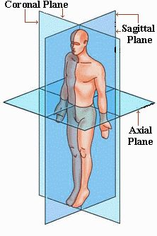 3 Major Anatomical Planes of the Body