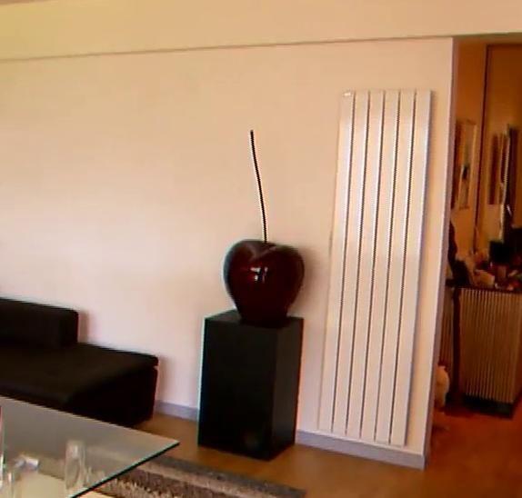 Pour une belle décoration dans votre maison, utilisez une cerise déco XXL