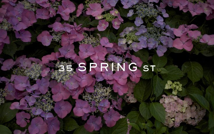 Cornwell | Project - 35 Spring St