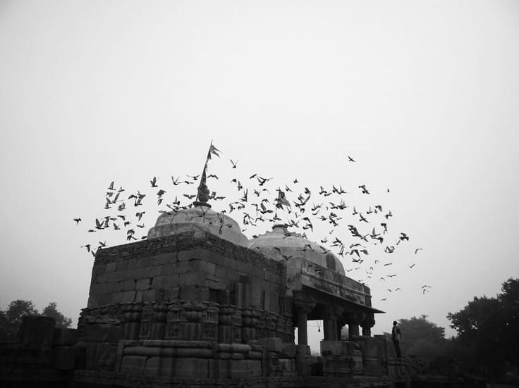 ✨✨One can never consent to creep when one feels an impulse to soar - Hellen Keller ✨✨😊 TRAVEL | INDIA | MONUMENTS