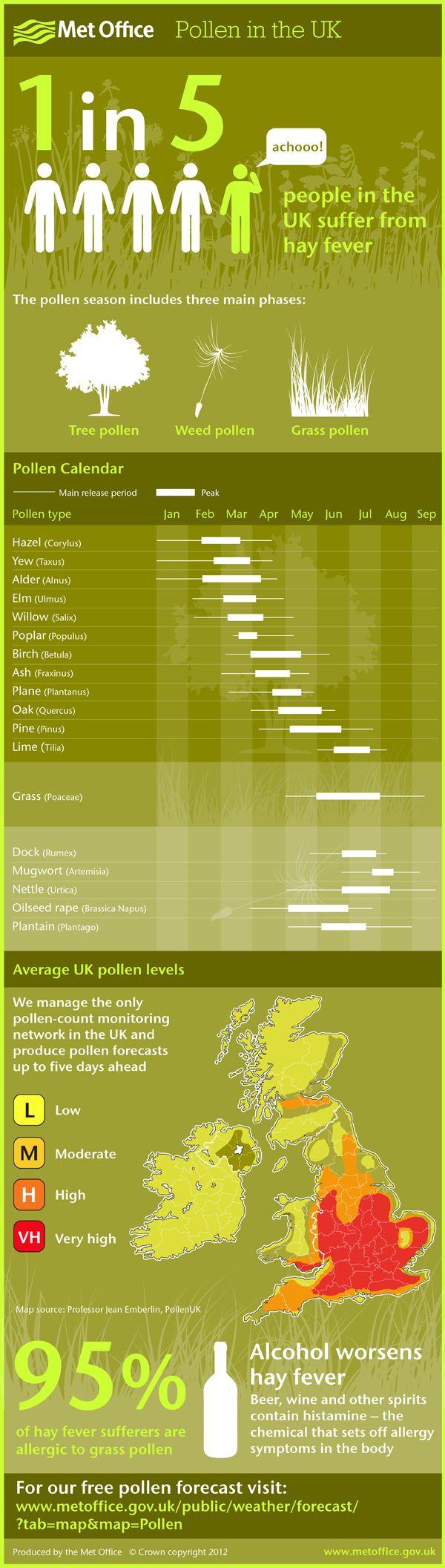 UK Pollen Calendar Infographic 2012