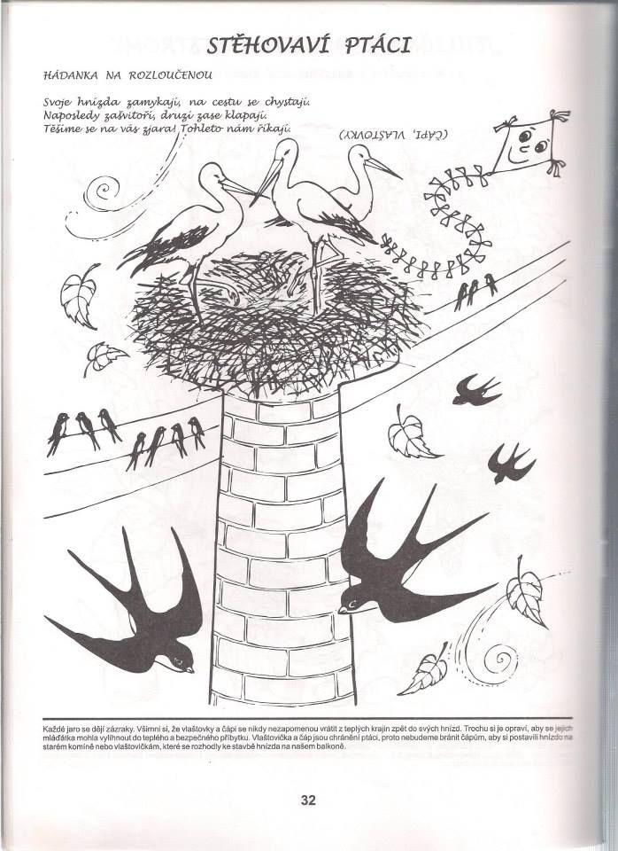 stěhovaví ptáci- pracovní list