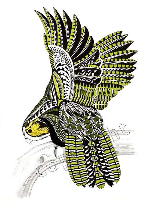Kakapo, illustration by Sam Clark http://nl.wikipedia.org/wiki/Kakapo