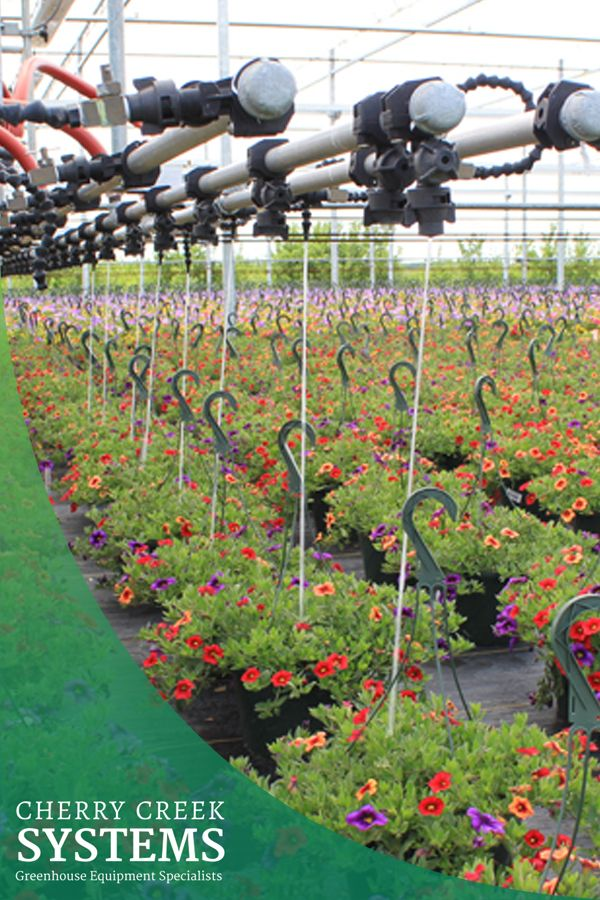 Cherry creek systems a leader in greenhouse technology provides high quality automated greenhouse irrigation systems to growers in worldwide markets