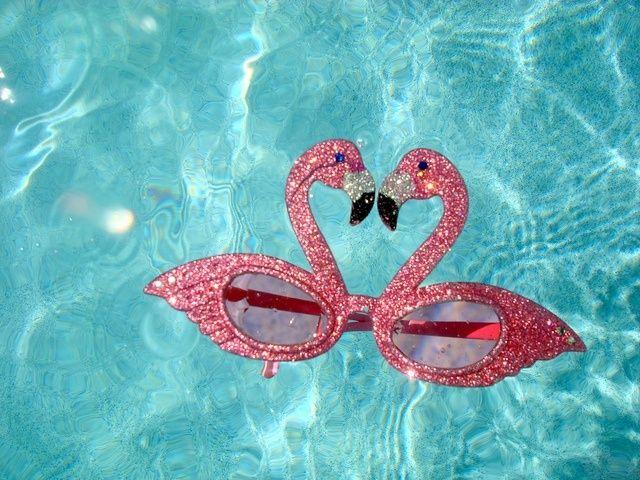 欲しすぎる♡ケイト・スペードのフラミンゴ柄シリーズが可愛い!にて紹介している画像