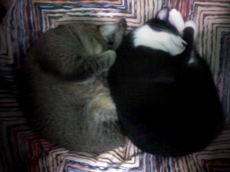 Sleep for two