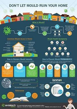 Mould removal infographic #home #health #mould #indoorair #airquality #infographic