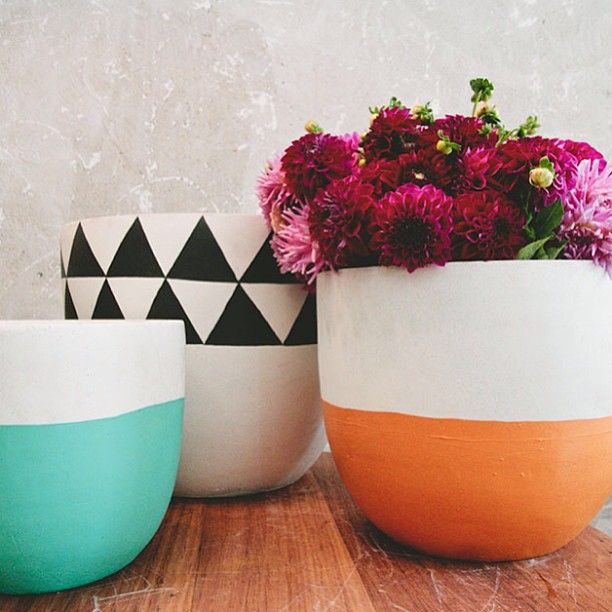 I want to grow flowers in coffee mugs!