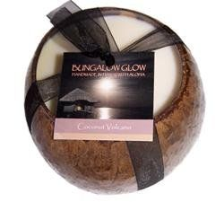 Hawaiian Coconut Candle Coconut Scent $23.99
