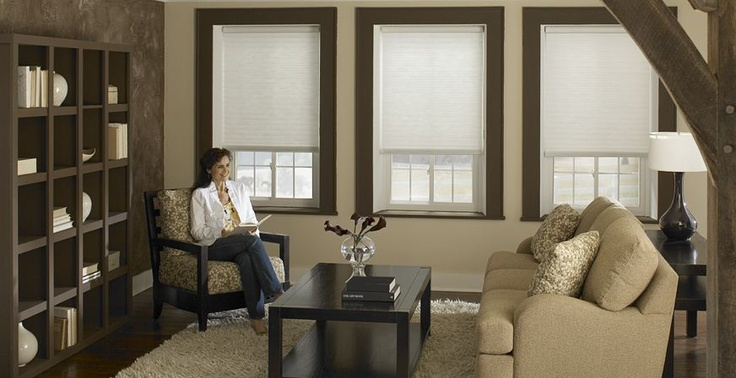 Types of Blinds We Offer - Cellular Blinds http://blog.3dayblinds.com/types-of-blinds-we-offer-3-day-blinds/