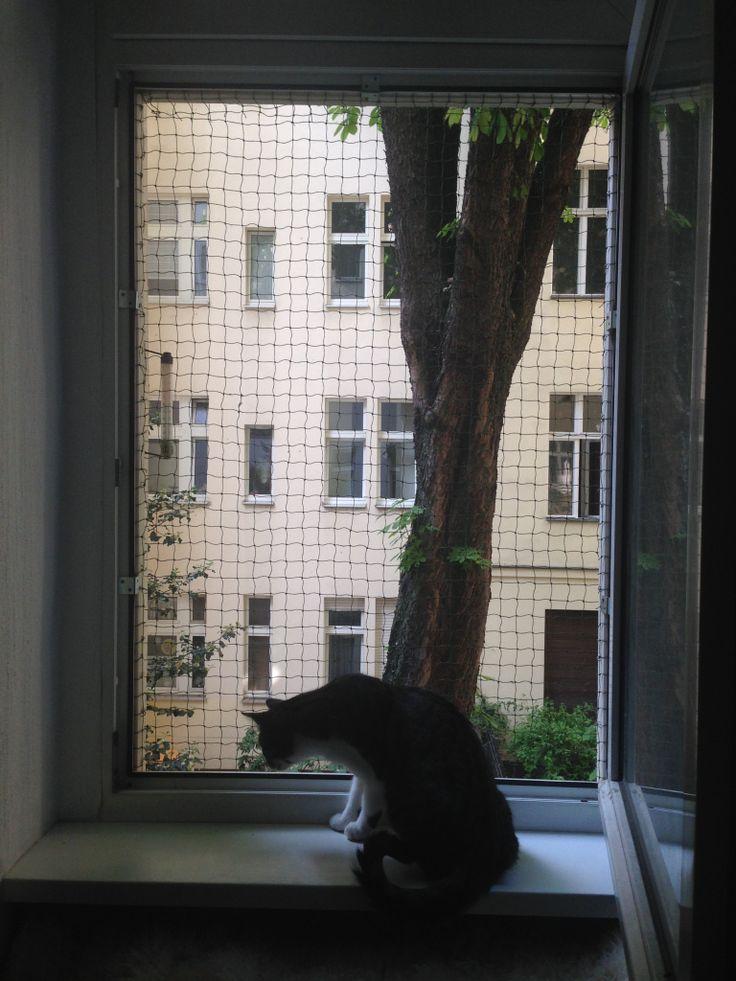 Die Fenstersicherung wird ohne zu bohren einfach an den Fensterrahmen geklemmt.