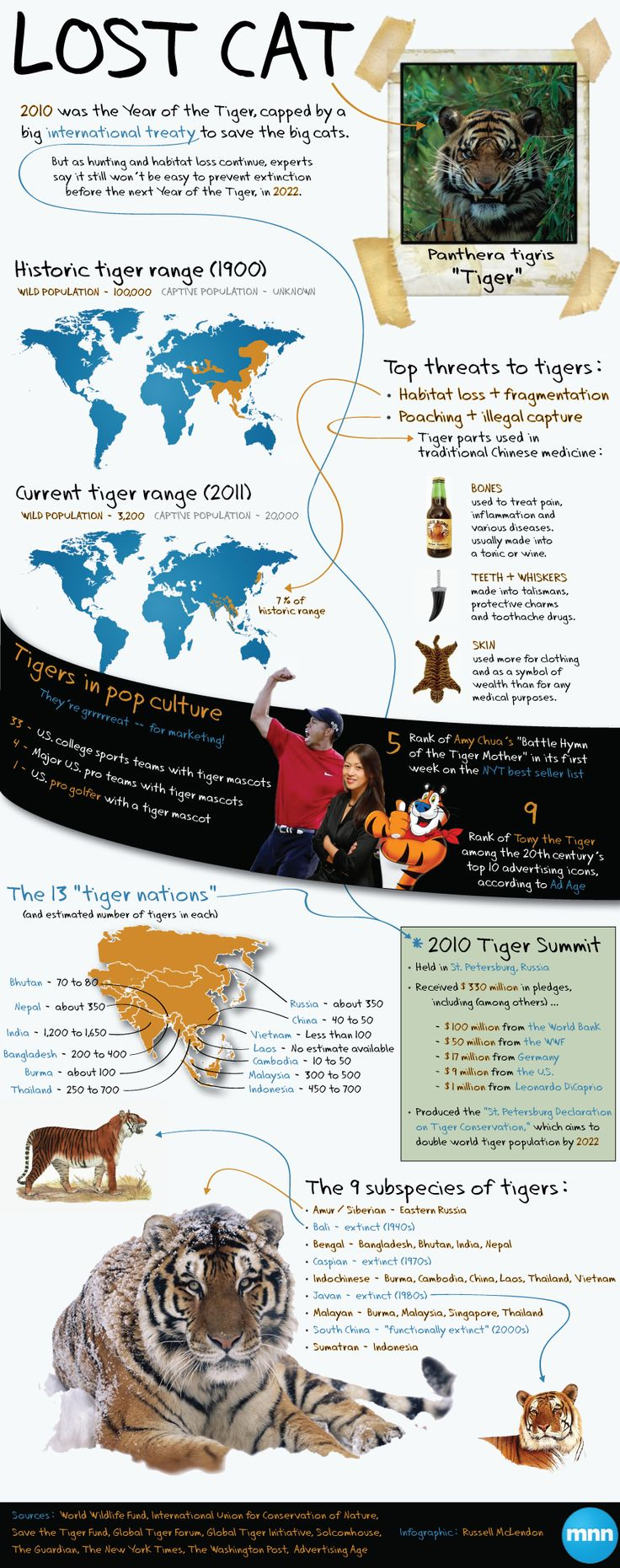As one Year of the Tiger comes to an end, experts are racing to stop the big cats from going extinct by the next one in 2022 (Infographic)