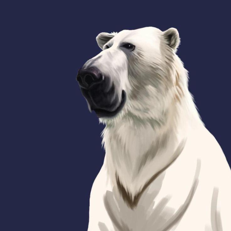 Something I am playing with! Animal caricatures!! Polar bear!! #art #artist #artwork #artoftheday #illustration #photoshop #portrait #great #cool #digital #digitalart #digitalpainting #caricature #face #fun #funny #color #robart #robsnowcreative #sketch #draw #drawing #painting #painter #illustrator #wacom #humor #instaartist #instaart instagram | art | ideas | follow