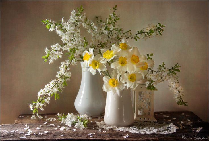 Весна уже близко весна нарциссы цветущая вишня натюрморт