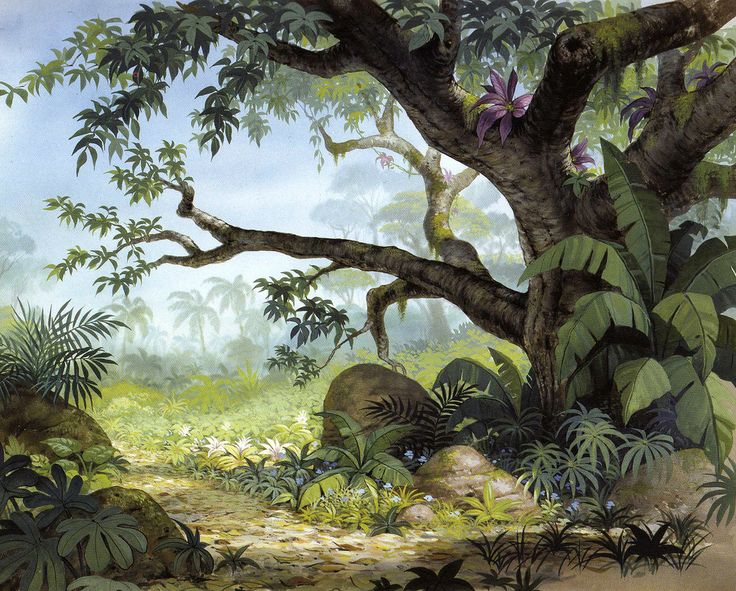 Jungle Book Background Illustration Amp Graphic Art