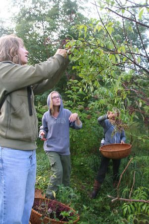 Permaculture Design Course New England