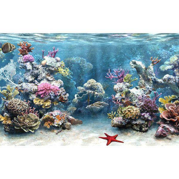 3d Aquarium Live Wallpaper: Best 25+ Aquarium Screensaver Ideas On Pinterest