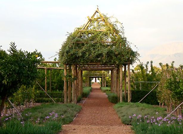 Babylonstoren is a farm hotel in South Africa with over 300 varieties of edible plants, a vineyard, formal gardens and places to visit via canoe. #resorts #travel