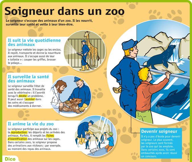 fiche metier veterinaire zoo