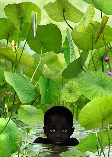 Camouflaged between the water plants