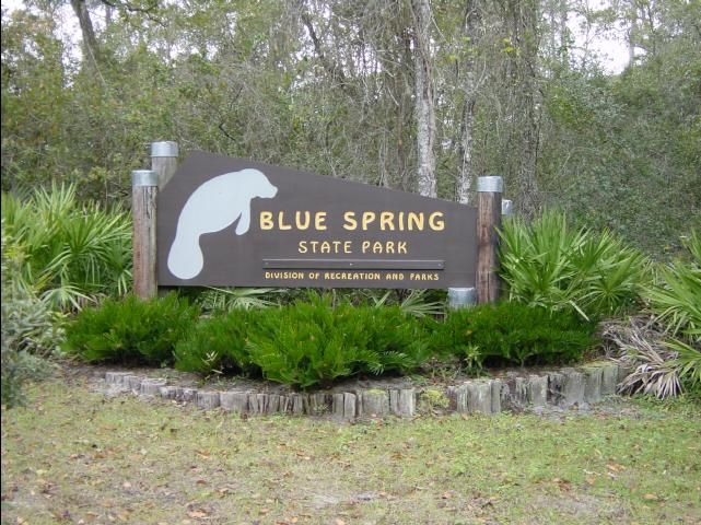 Each year, hundreds of West Indian Manatees make their way to their winter home at Blue Spring State Park in Orange City, FL.   Visit West Volusia and discover the magic of these enchanting creatures. http://visitwestvolusia.com/whattodo.cfm/mode/outdoors