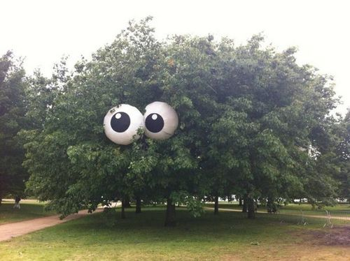Beach balls painted to look like eyes put in a tree for