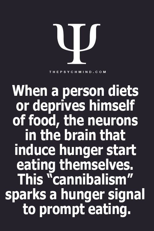 This is all I needed to see to justify why dieting is wrong lol.