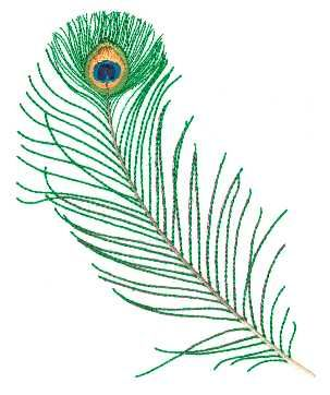 Google Image Result for http://www.secretsof.com/embroiderytips/dilly/designs/feathers/Large/Peacock%2520Feather01.jpg