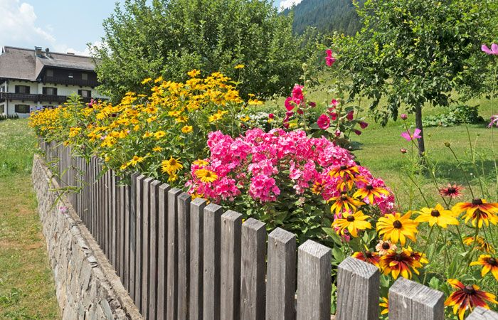 57 Best Summer Garden Images On Pinterest Beautiful